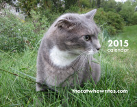 Order your Cat Calendar Here