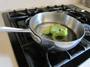 Not having a budget is like a frog in a pot of water.