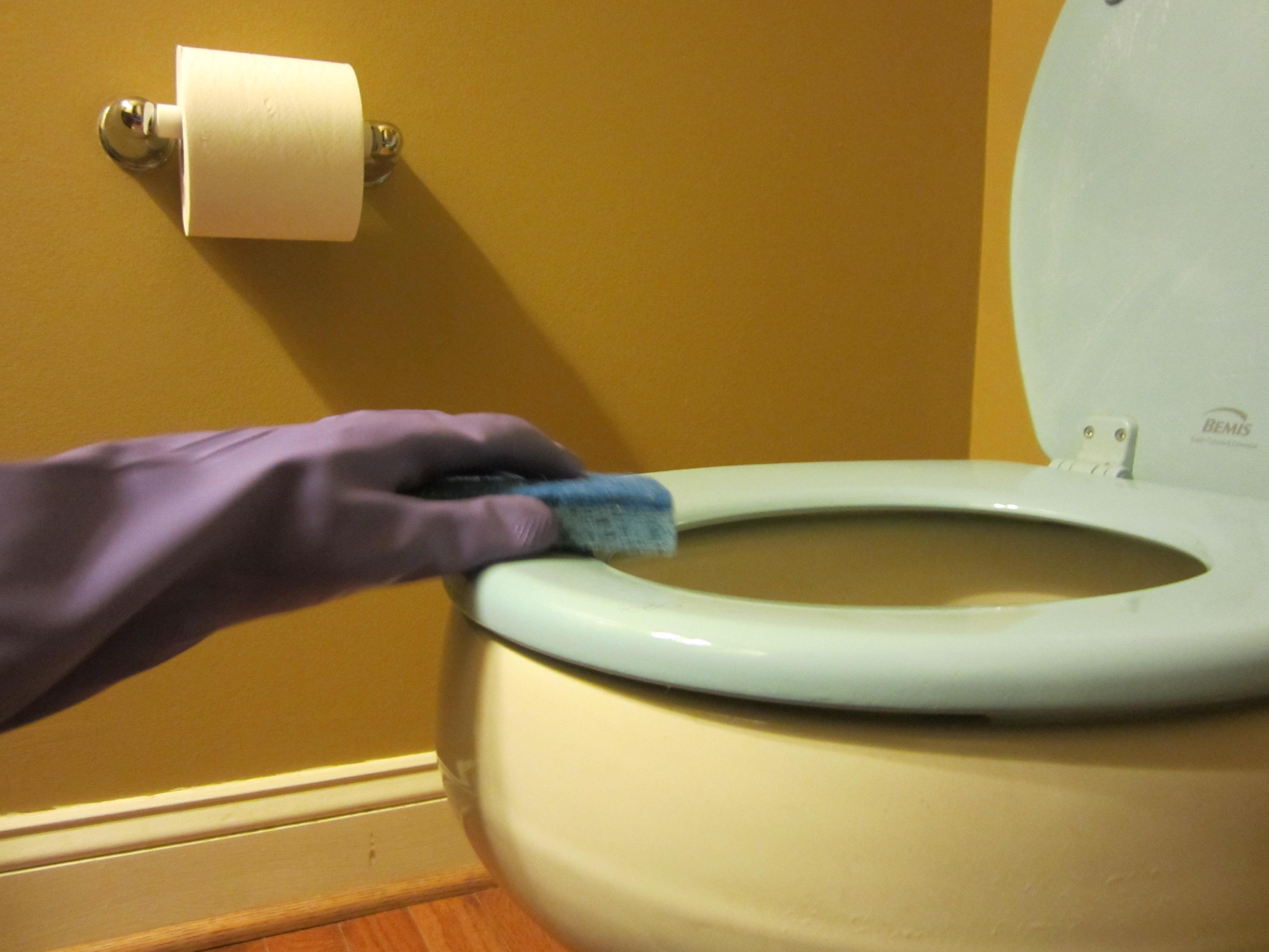 Would Clean Toilets Pamela Fernuik