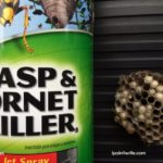 Take a can of wasp spray to your negative thinking